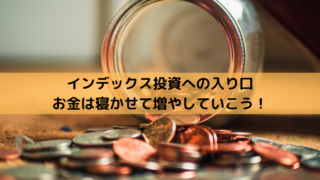 お金は寝かせて増やしなさい インデックス投資 積み立て投資